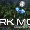 Dark Moor Slide